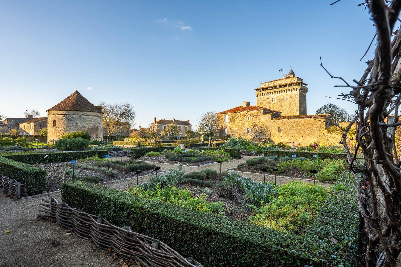 carrés du jardin médiévalde Bazoges en Pareds