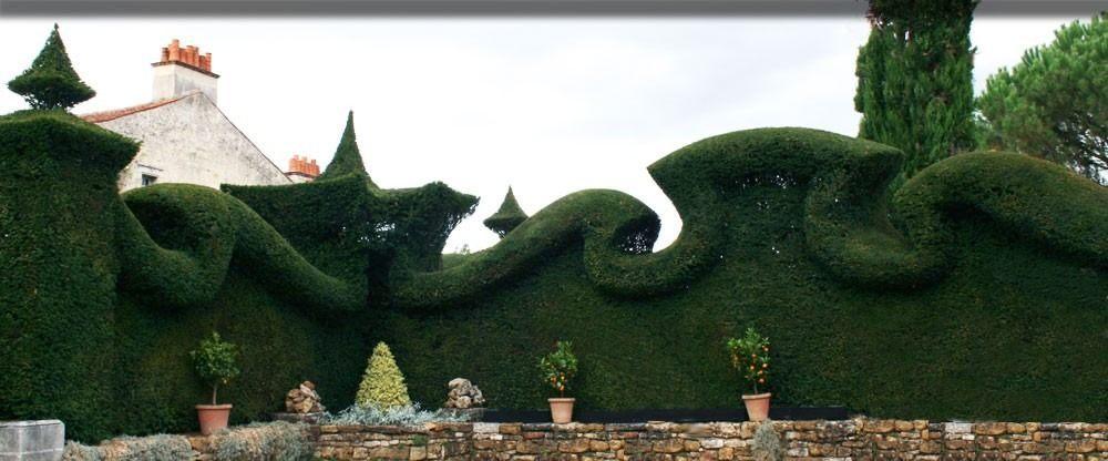 Détail végétal - Jardin de William Christie