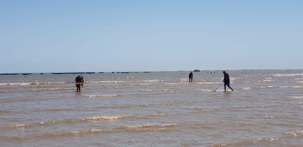 Pêche à pied - Water Fun