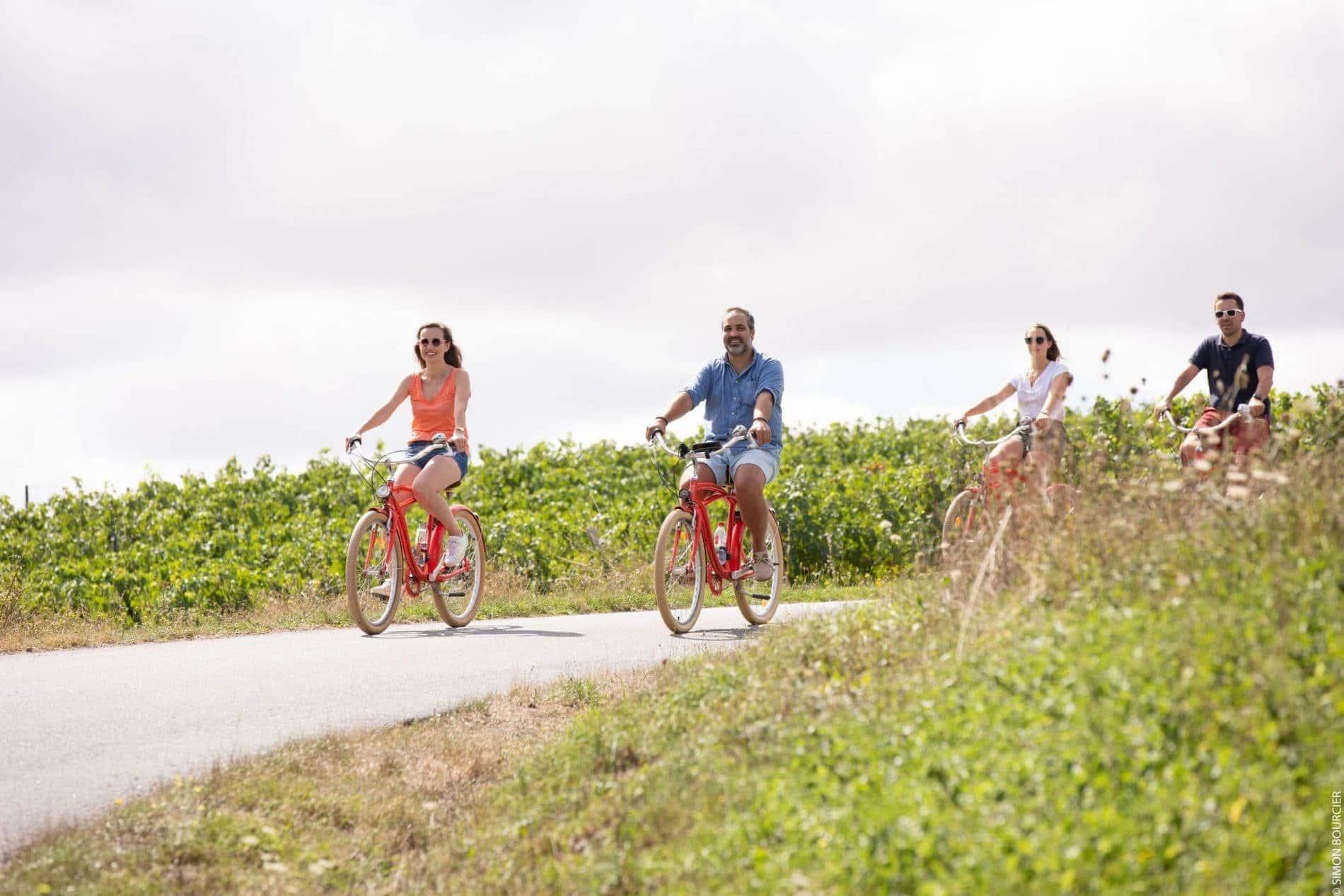Piste cyclable au milieu des vignes © S.Bourcier