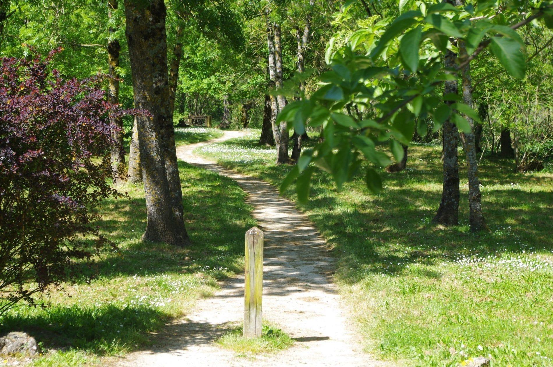 Parc du Vignaud ©Centre du Vignaud